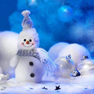 zimnie-snezhnosti